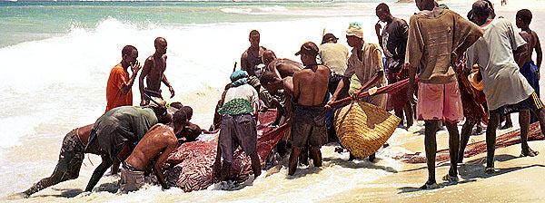 pesca-en-kenia-recogiendo-redes-llenas-foto-jesus-morante.jpg