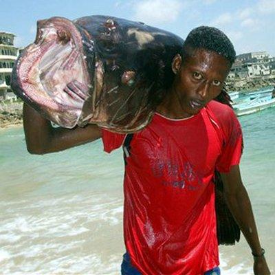 piratas-en-somalia-pescador-con-pez-yapuri-en-playa-de-mogadiscio-foto-ap-mohamed-sheikh-nor.jpg