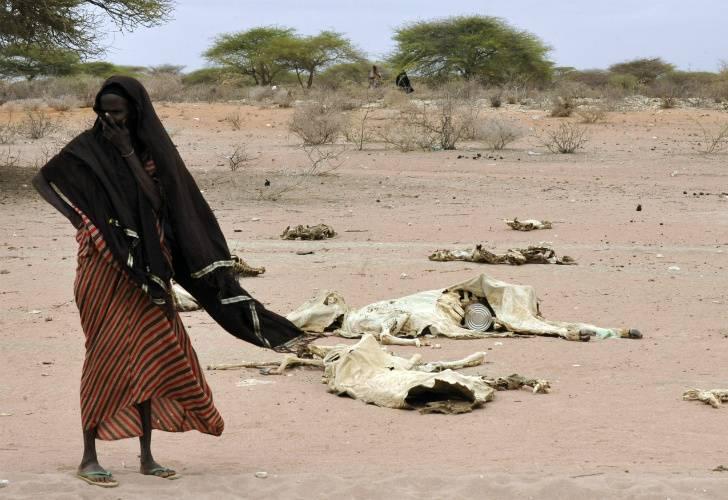 somalia-el-olor-a-muerte-en-los-caminos-es-insoportable-foto-afp.jpg